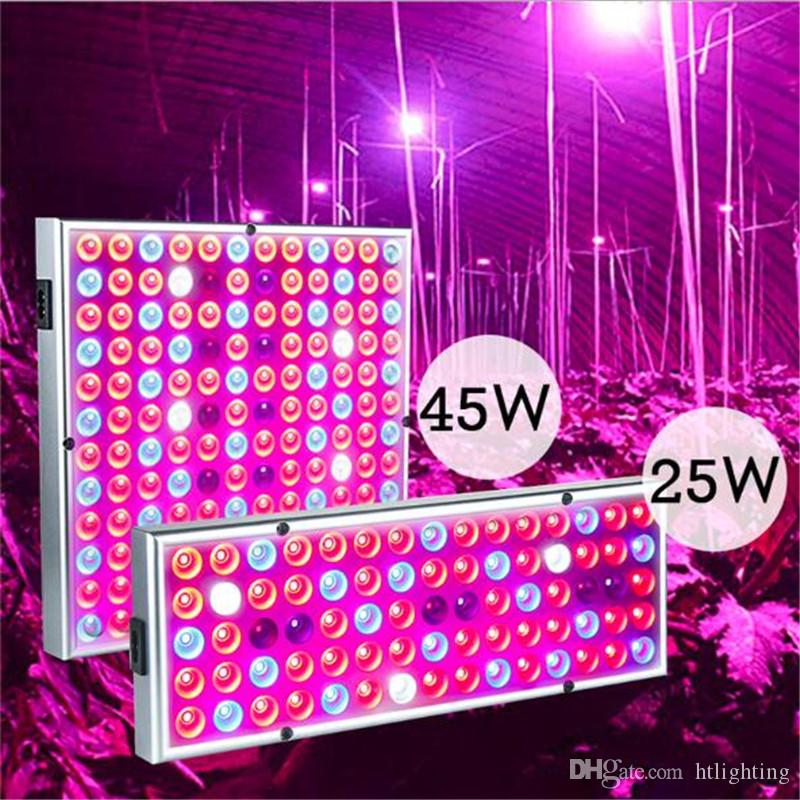 25W 45W LED Grow Light Full Spectrum Plant Growth Lamps LED Panel With  Reflector Cup Indoor Plant Flowers Seedling ASEAN JP KR