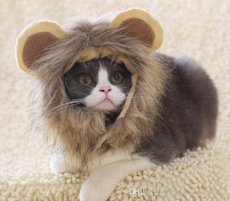 927dcfac15501 2019 Funny Cute Pet Costume Lion Mane Wig Cap Hat For Cat Halloween Xmas  Clothes Fancy Dress With Ears Autumn Winter From China wholesale15
