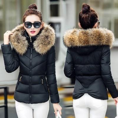 15f20164e 2018 New Parkas Female Women Winter Coat Thickening Cotton Winter Jacket  Womens black faux fur Outwear Parkas for Women Winter Y18102502