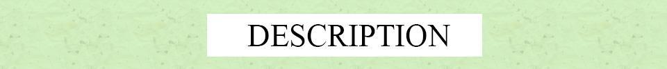 Hand Made Красочные Древо Жизни Радуга Деревянные Бусы Ожерелье Подвески Boho Этническая Мудрость Дерево Дерево Ожерелья Ювелирные Подарки