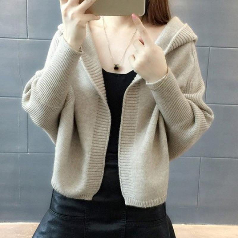 2a90c28a063f 2019 Women Fashion Casual Loose Hooded Sweaters Women Batwing Sleeve ...
