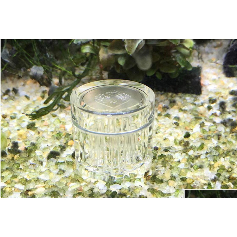 8 hole snail trap transparent leech vivarium planarian pest catch pen red bee shrimp worm bait feeding box aquarium cleaner tool