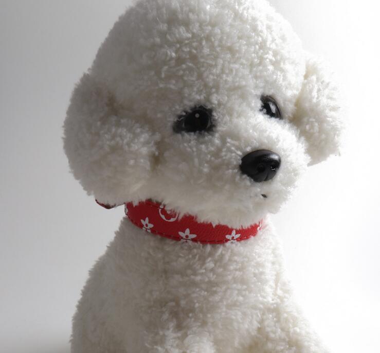 Домашние животные Ошейники 2-х частей Набор Классические и поводки Pa Pattern PU Мода Регулируемый бренд Pet Собаки Кошки Покалы Открытая Личность Симпатичный Пэт