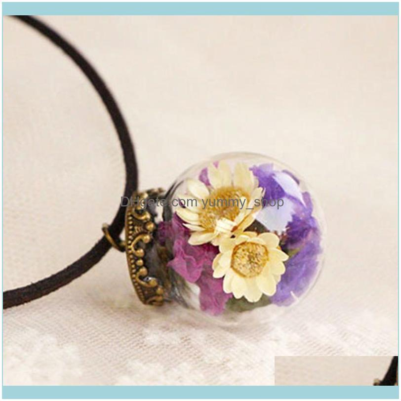 5 Color Handmade Dried Daisy Pendant Necklace Real Dried Flower Glass Wish Bottle Choker Necklace Women Jewelry For Mori Girl