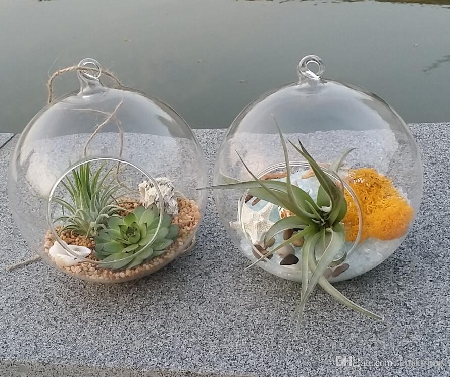 2019 Globe Glass Terrarium Kit Air Plant Succulent Terrarium Hanging