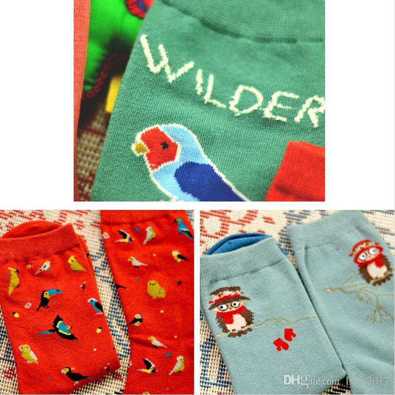 Sevimli hayvan baykuş nakış kadınlar pamuk çorap güzel kuş Papağan Jakarlı kadın saf renk renkli çorap komik meias çorap