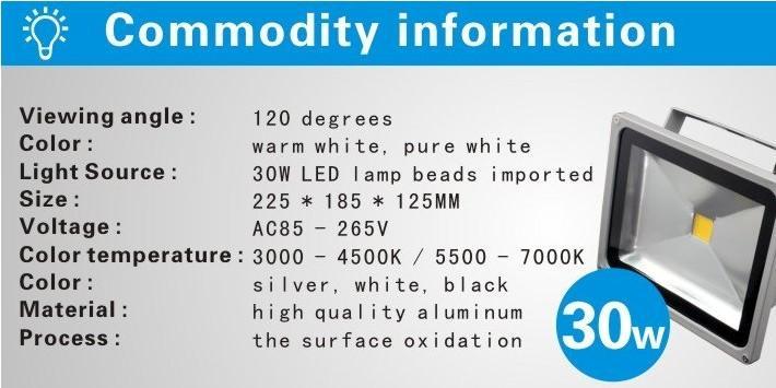 DHL IP65 Su Geçirmez 30 W Led Projektör Açık Proje Lamba LED Projektörler aydınlatma COB Chip 85-265 V Süper Parlak sel ışıkları 666 KK