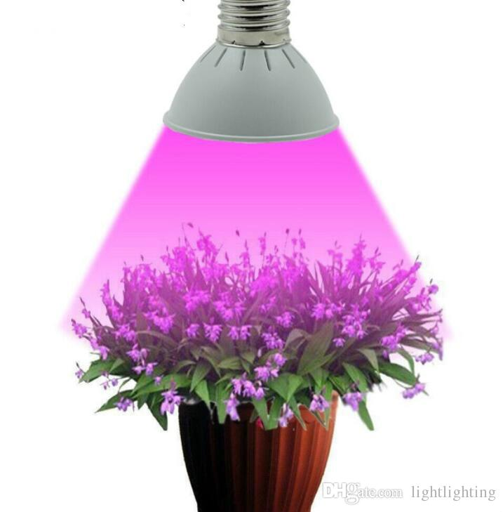 Captivating Full Spectrum E27 10w 86redu002620blue Led Grow Lights Hydroponics Plant Lamp  Best For Growing And Flowering Limited Time Offer Weed Growing Lights Weed  Grow ...