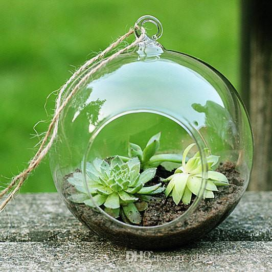 2018 Glass Orb Planter Vases,Hanging Globe Terrarium Kit For Garden Decor,Home  Decoration,Wedding Decor,Green Gifts For Her From Championcrafts, ...