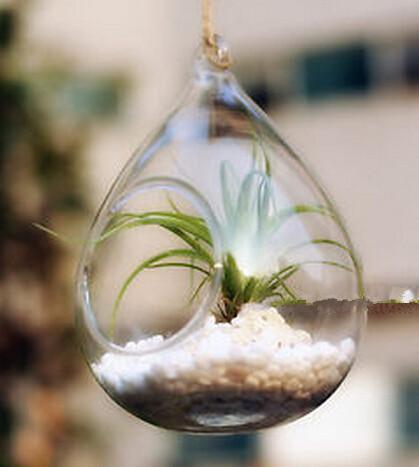 Nowy Przyjeżdża Water Drop Drop Szkło Wiszące Sadzarka Pojemnik Wazon Dekoracja Terrarium