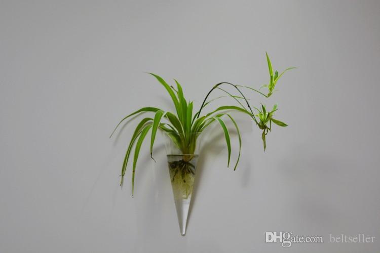 Clear Cone shape glass hanging terrarium Glass flower vases water planter wall vase glass terrarium for home garden decoration