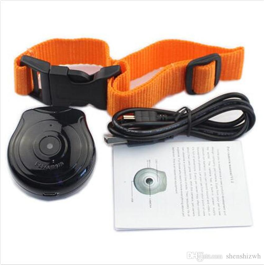 Digital Pet Collar Camera Video audio JPG Recorder Monitor For Dogs Cats Puppy Pet dog cat motion camera