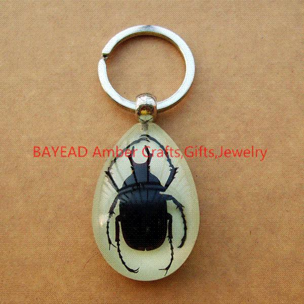 Real Big Bug In Glow Resin Keyring Insect Amber Resin Keychains Bug Keyring  Insect Keychains 45 30 15mm Novel Memorial UK 2019 From Weiwei6 bbea757b2859