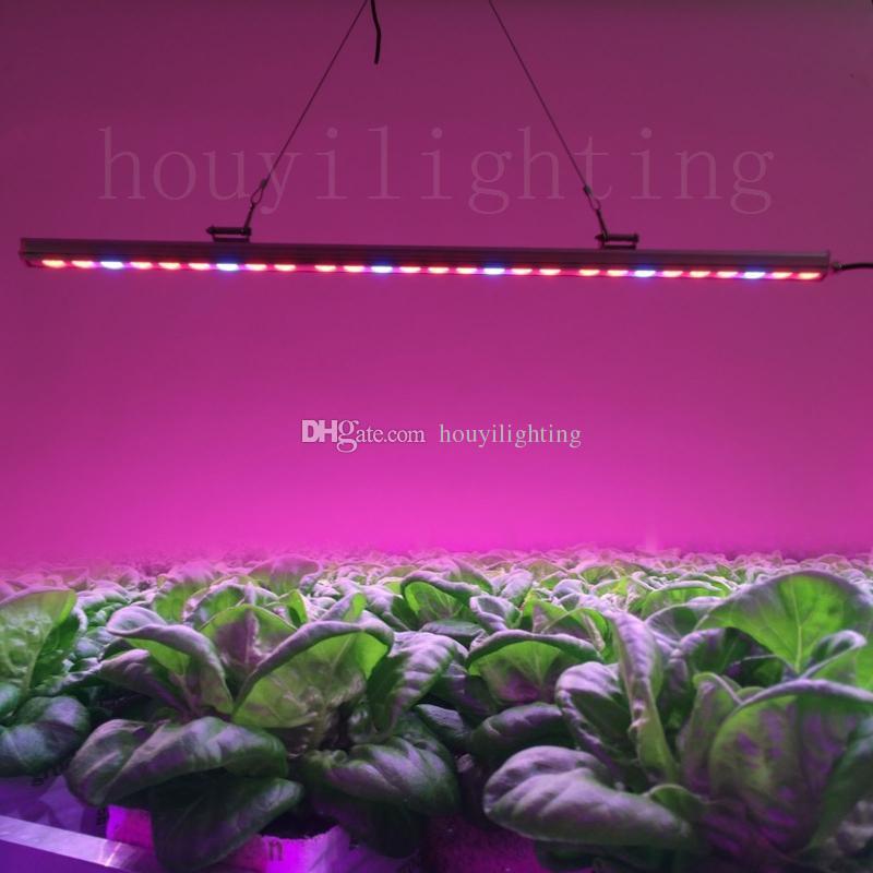 Led Grow Light Bar 81w Hydroponic Led Grow Light Strip Red+Blue For Indoor  Greenhouse Plant Veg Flower Strip Lamp Waterproof 54w81w108w Led Grow Bar  Led ...