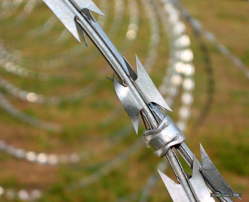 2018 Free Sample Barbed Wire, Razor Wire, Razor Barbed Wire From ...