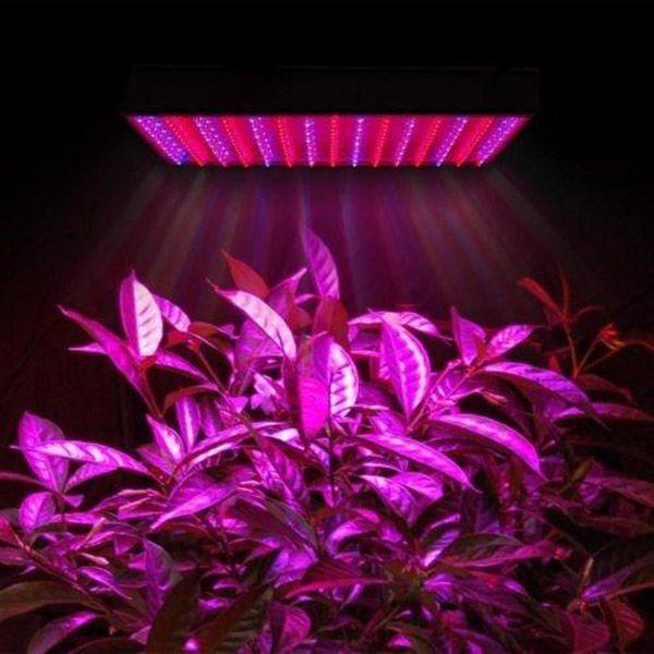 LED Grow Lâmpada 225 LED planta hidropônica cultivar painel de luz vermelho / azul 15w led planta crescer luzes 225 LEDs painel luzes 110-220v 20