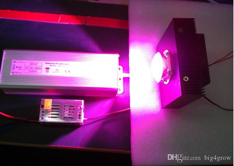 Faktisk effekt 150W DIY LED Grow Kit, 150W LED Grow Light Chip + Strömförsörjning + Big Heat Sink + Fan och Driver + Big Lens + Reflektor