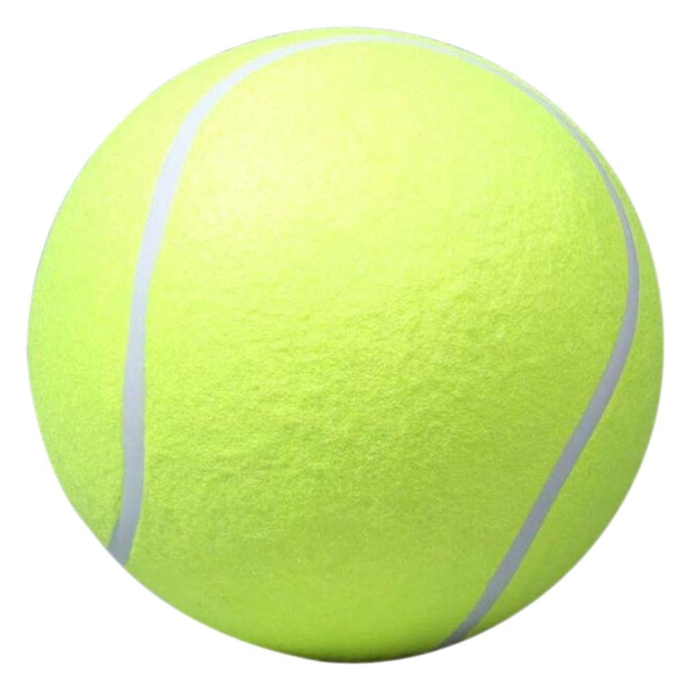 Wholesale Promotion 24cm Large Dog Ball For Pet Chew Toy Pet Puppy