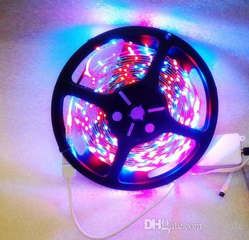 5 متر لكل لفة RGB LED قطاع الخفيفة SMD 3528 300 المصابيح 12 فولت 60 المصابيح / م غير ماء 24 مفاتيح تحكم عن بعد 2A محول الطاقة 5M 12V CE