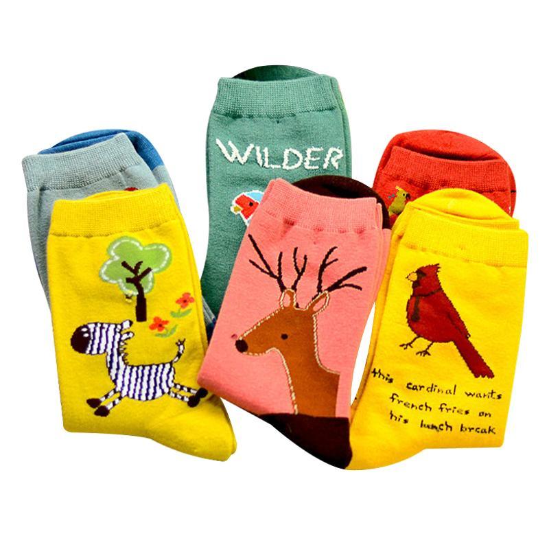 YENI Sevimli Hayvan Baykuş Nakış Kadınlar Pamuk Çorap Güzel Kuş Papağan Jakarlı Kadın Saf Renk Renkli Çorap Komik Meias Çorap