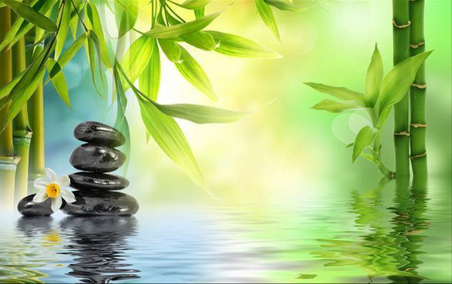 Nature S Bamboo Brand