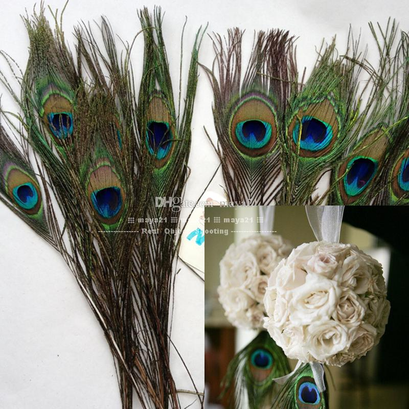 Wholesale Natural Peacock Feather 10 12 Inchs Plume
