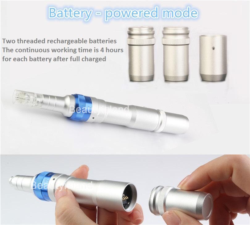 Derma Skin Pen Oplaadbare 2 Batterijen Derma Pen Elektrische Derma Stempel Pen Micro Naald Theepy Ultima A6 Anti-Aging met -cartridge