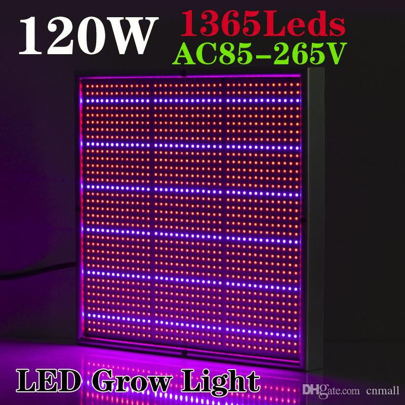 Smd 120w 1131red + 234blue Led Grow Lights Hydroponics Flower Fruit  Vegetable Greenhouse Led Plant Lamp Ac 85~265v Grow Panel Light Full  Spectrum Led Grow ... Awesome Design