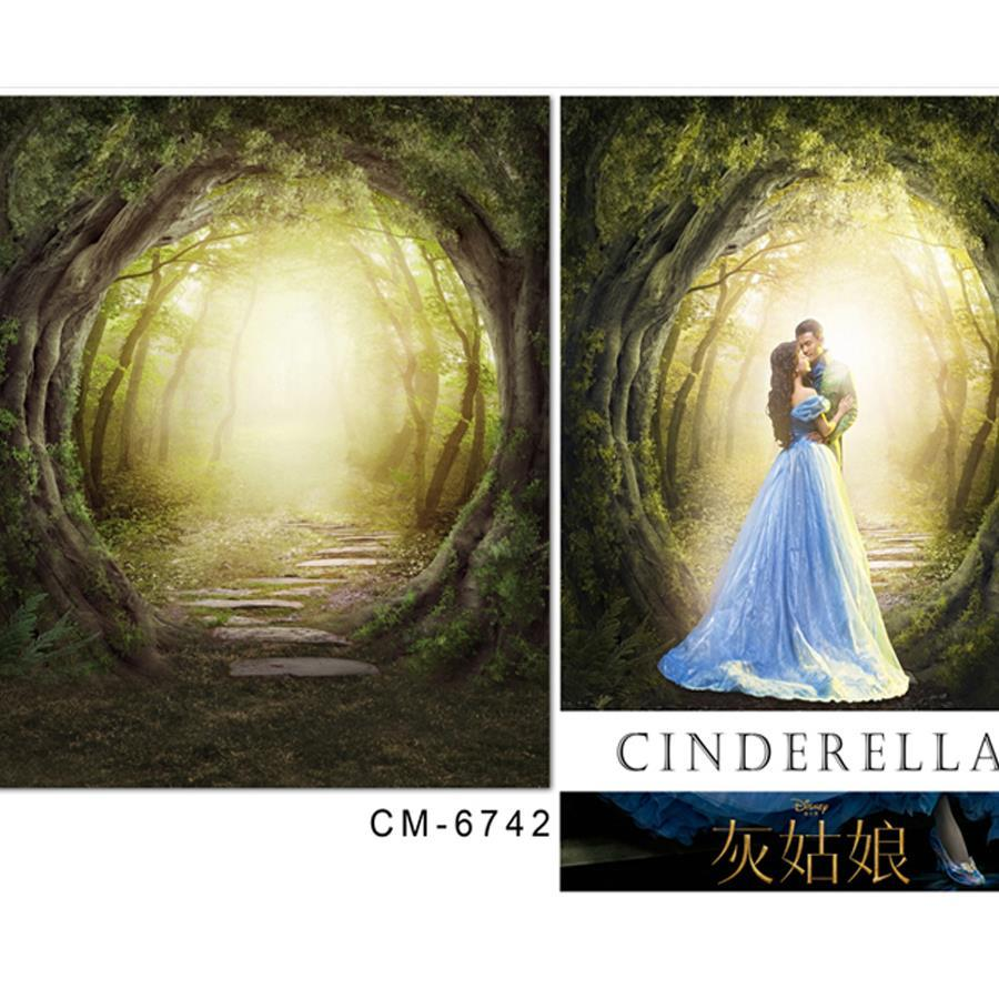 Backdrop baby cinderella fantasy forest entrance photo studio backdrop 5x7ft150x220cm wallpaper backdrop christmas backdrops floor vinyl wood online with