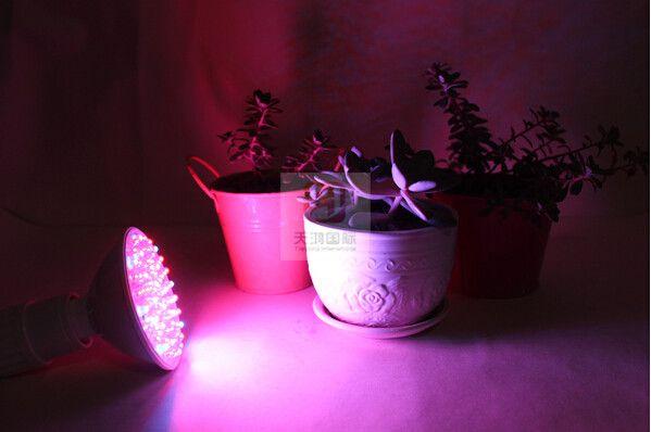 10W E27 UFO led 빛 RB 80leds 60Red : 수경 시스템 및 꽃 식물 20 파란색 보육 조명