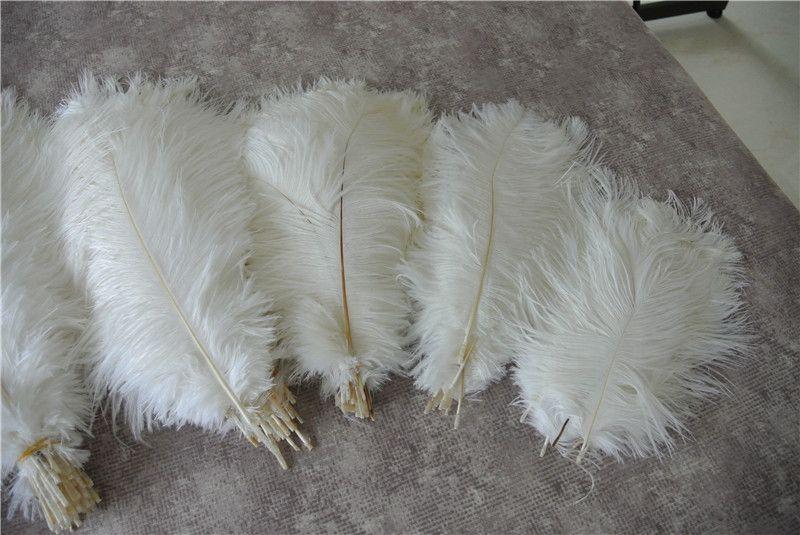 Оптовая продажа 100шт. Белое перо страуса для свадебного центра.