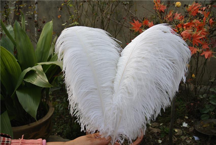 Бесплатная доставка дешевые Белый страусиное перо шлейф 100 шт. 14-16 дюймов 35-40 см свадьба Центральным свадебный декор событие декор праздничный декор