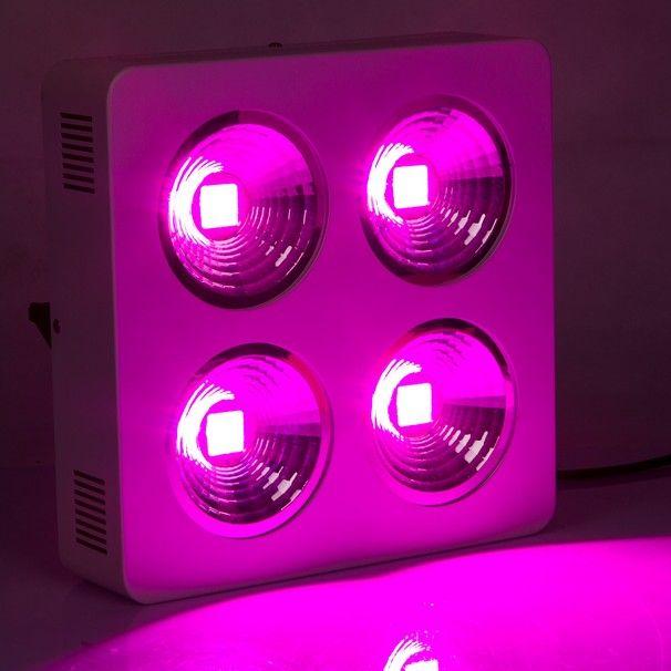 Huge Power Led Grow Light Cob 800w 64x3w Reflector Cup