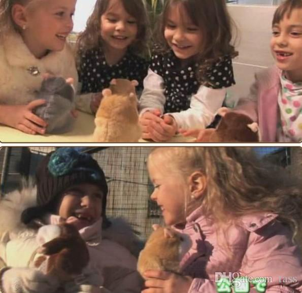 Lovely Talking Hamster de peluche de juguete Hot Cute Speak Talking Sound Record Hamster Talking Toys para niños