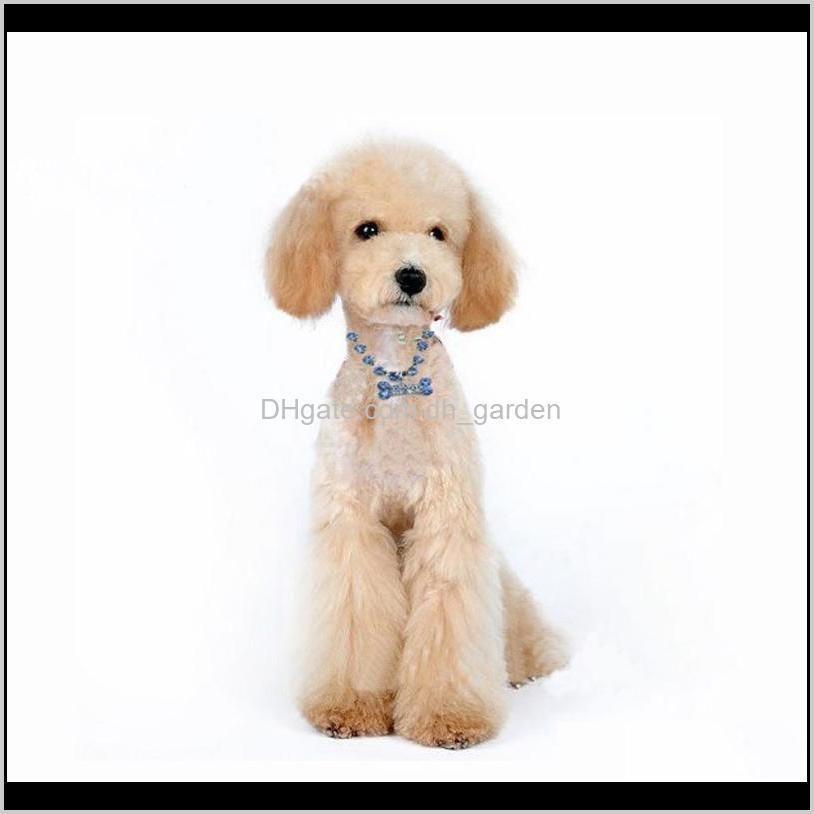 fashion jewelry puppy dog cat collar design crystal rhinestone bone charm pendant metal neckalce pet wedding accessories collars &