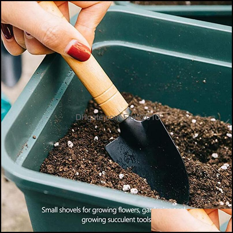 Factory 3pcs/set Shovel Rake Set Wooden Handle Metal Head Shovel for Flowers Potted Plants Mini Garden Tool Seed Disseminators HWD6108