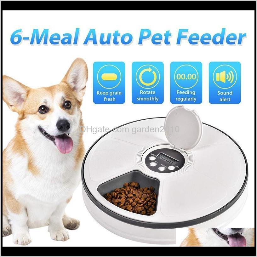 automatic pet feeder dispenser for dogs, cats & small animals - features distribution alarms, programmed timed self 6 meal dog bowls fe