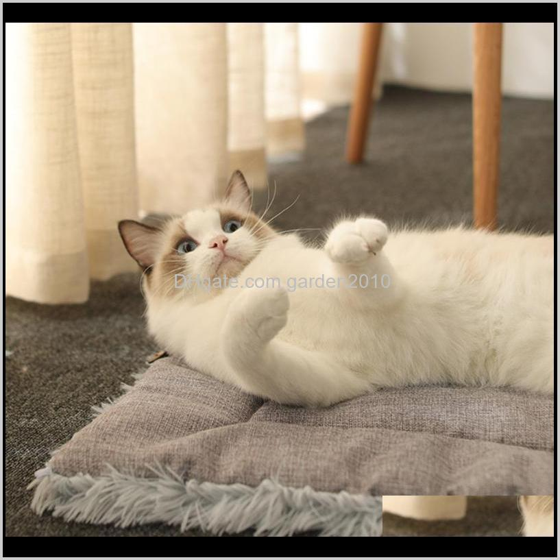 comfotable cat blanket four seasons 2 in 1 nests winter warm sleeping pads cushion for home kitten dog pet supplies beds & furniture