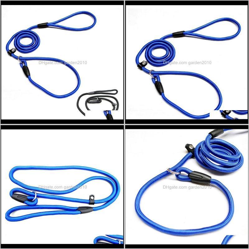 1.0*140cm pet dog nylon adjustable loop training lead collar leash traction rope (blue)