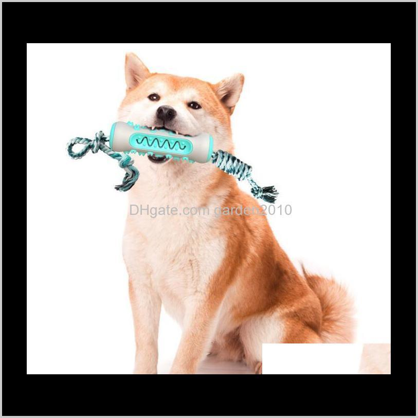 multi pet toothbrush chew bones tpr odontoprisis resistance to bite dog cat toys & chews dog pet supplies ha281