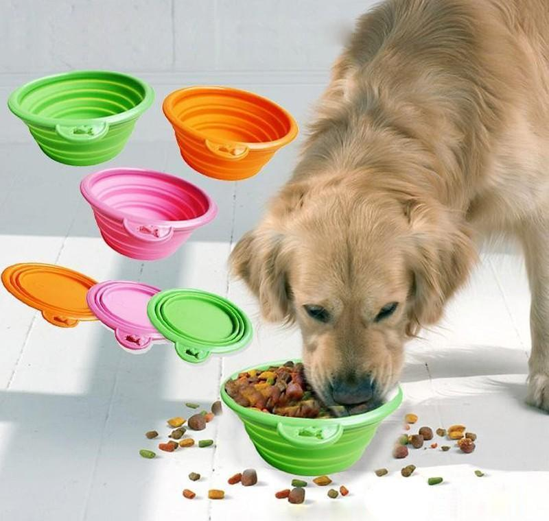 Collapsible foldable silicone dog bowl candy color outdoor travel portable puppy doogie food container feeder dish