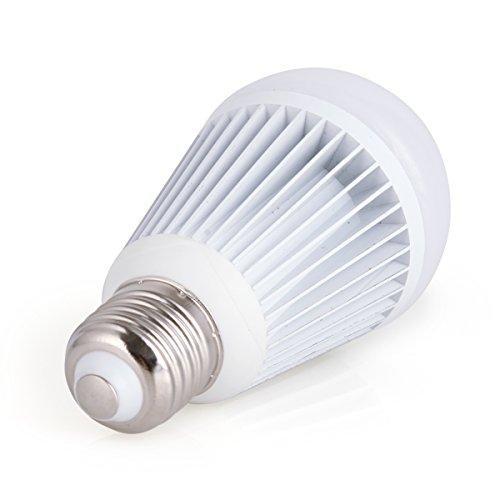 10w 12v Led Bulb Warm White A19 Small Size 900 Lumens Brightness