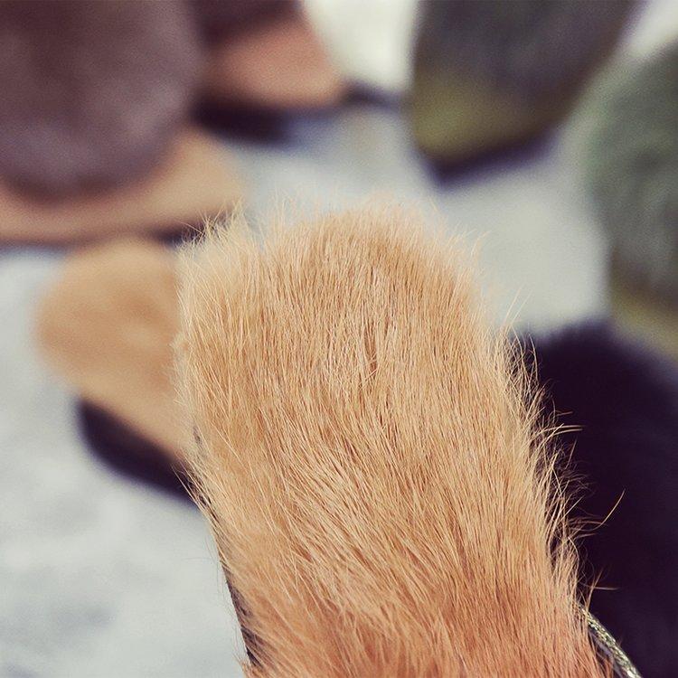 2017 Pantoufles Femmes Automne Hiver Talon Plat 100% Vraies Pantoufles De Fourrure Glissement Sur Fourrure De Lapin Bout Pointu Plats À L'extérieur Mocassins
