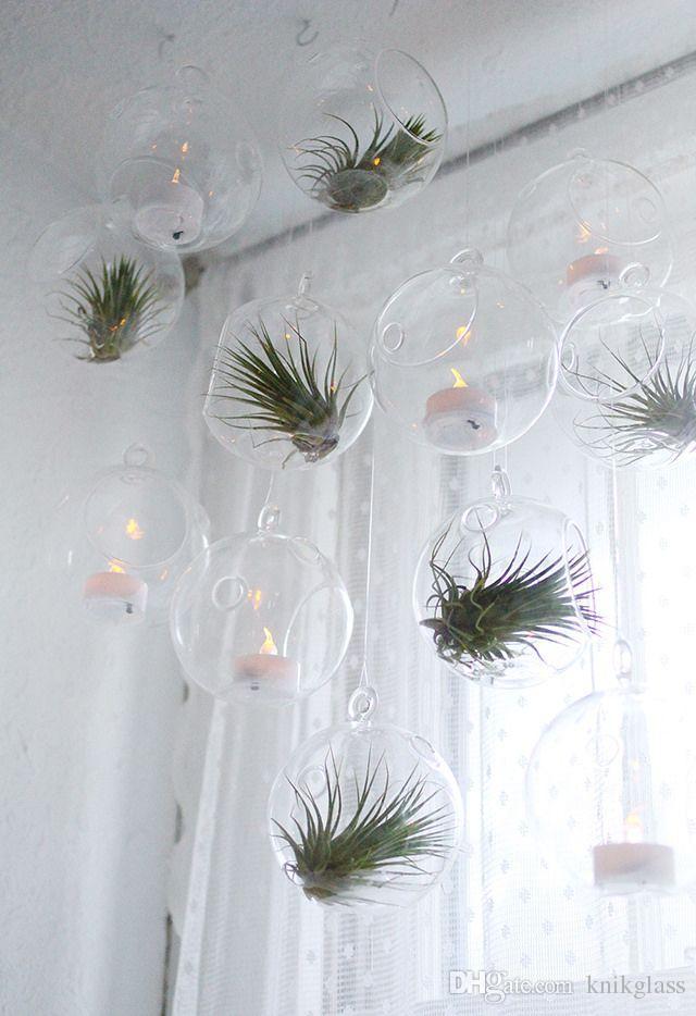 Unique Hanging Glass Planters/air Plants Orb Terrarium,indoor Plants  DQ21