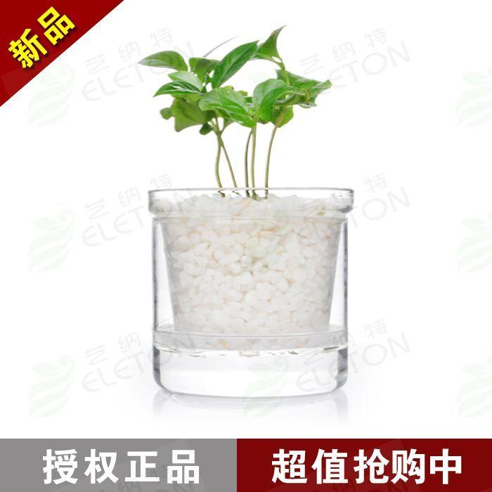 high borosilicate glass flower pot transparent glass fancy green plant pot  double layer water mini flower pot with filter hand-made vase