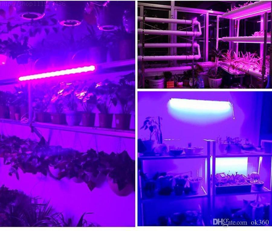 La lumière de bande menée croissante pour la serre d'aquarium Systèmes hydroponiques La plante imperméable cultive la lampe 4 Red 1 tente de croissance bleue