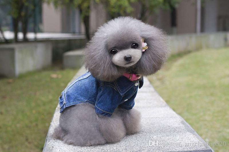 dog appael male puppy dog jeans coat sky blue color dog winter clothes a factory sale