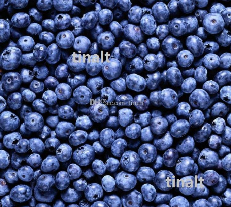 Limited Promotion Plastic Pot Seeding BlueBerry Seeds 1 Pack About Package, Blueberry Fruit Seeds Diy Countyard plant 1740