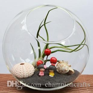 Glass Succulent Terrarium Moss Terrarium Desktop Vase Glass Candle