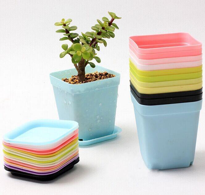 Plastic Table Bonsai Planters Mini Succulents Plant Pots and Plate  Gardening Vase Square Flower Pot Multicolor